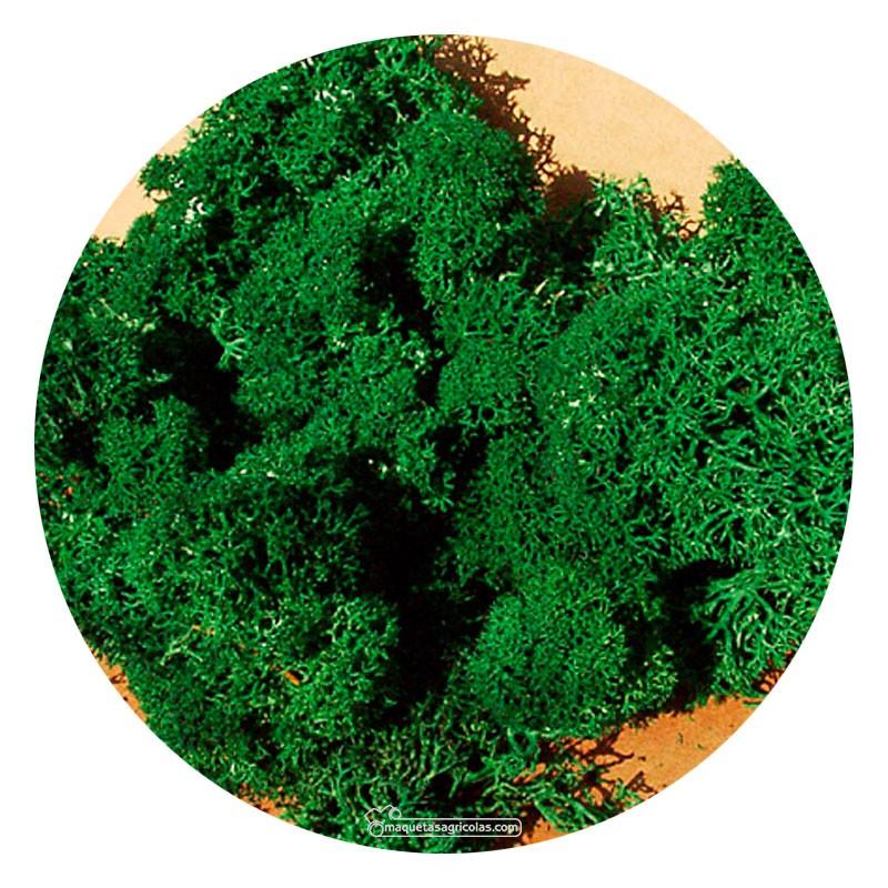 Musgo de Islandia verde oscuro 30 gr - Miniatura Heki 3211