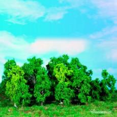 14 árboles de hoja caduca de 5 a 12 cm - Miniatura Heki 1992