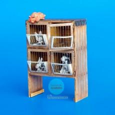 Kit de conejera con conejos ejemplo