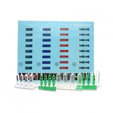 Kit botellas de refresco grandes - Para maquetar - Miniatura 1:35- PlusModel 446 pegatinas